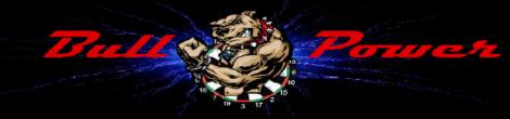 cropped-Bull-powerlogo-website-2016-1-1.png